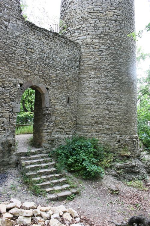 castle burgruine look forestry