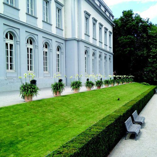 castle koblenz schlossgarten castle