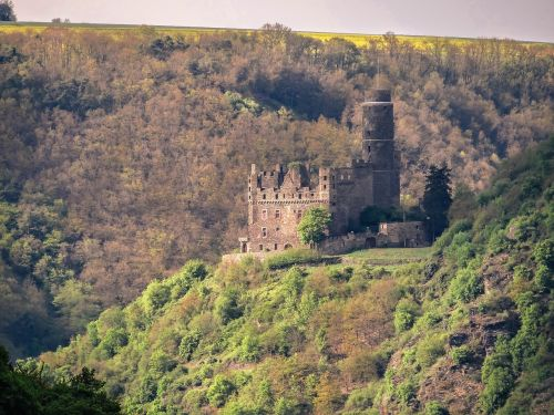 castle mouse castle rhine