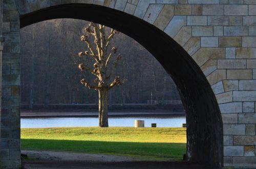 castle park meadow tree