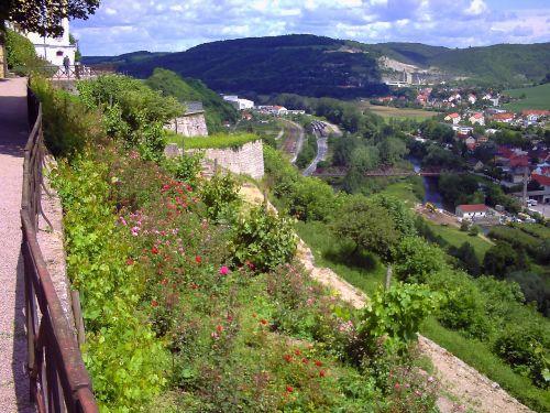 castle terrace flowers view