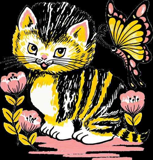 cat kitten feline