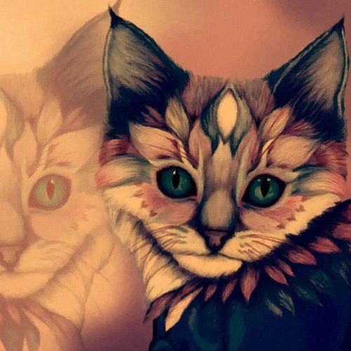 cat mysticism animal
