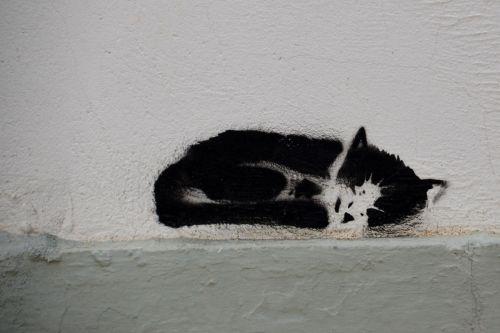 cat grafiti art
