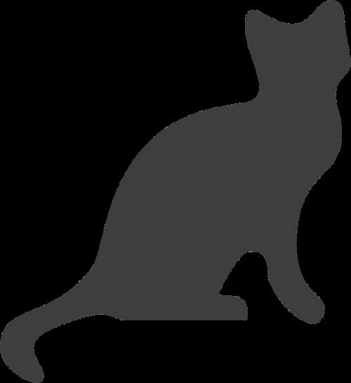 katė,pilka,Miau,gyvūnas,kačių,siluetas,nemokama vektorinė grafika