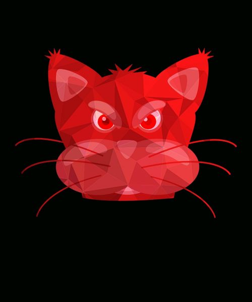 cat cat moustaches cat ears