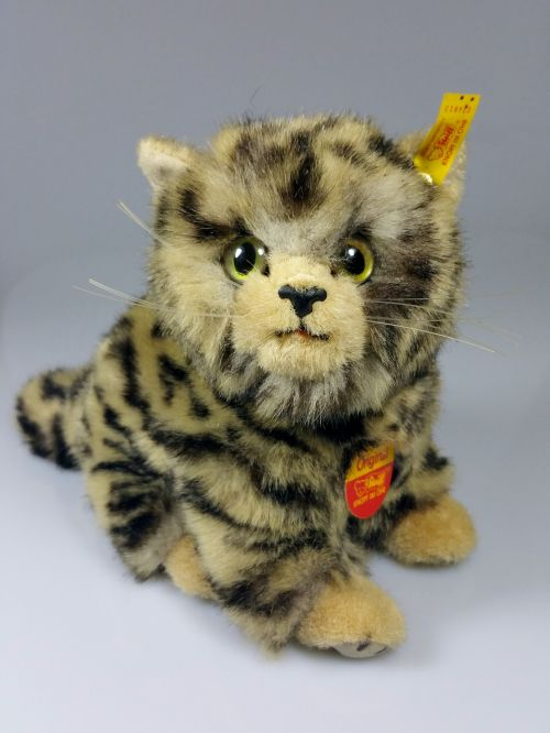 cat teddy bear stuffed animal