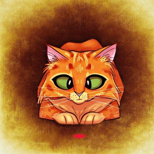 cat funny mieze