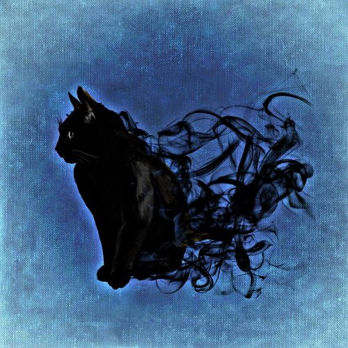 cat mystical abstract