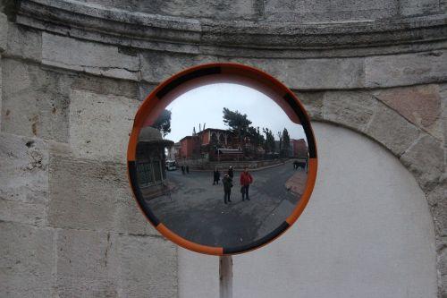 cat eye reflection portrait
