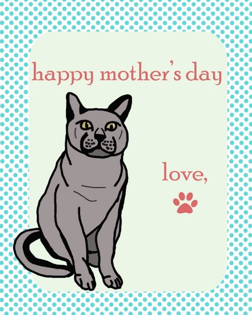 Cat Happy Mother's Day