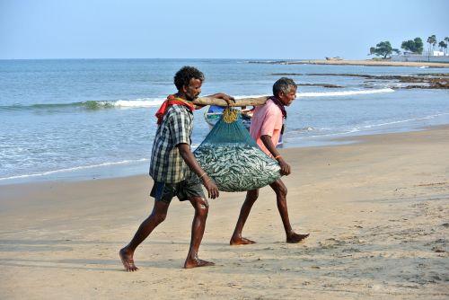 catch fish fishermen