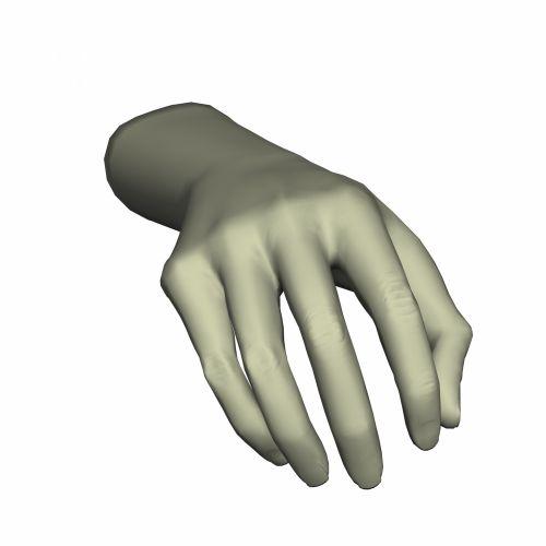 Catching Hand 1