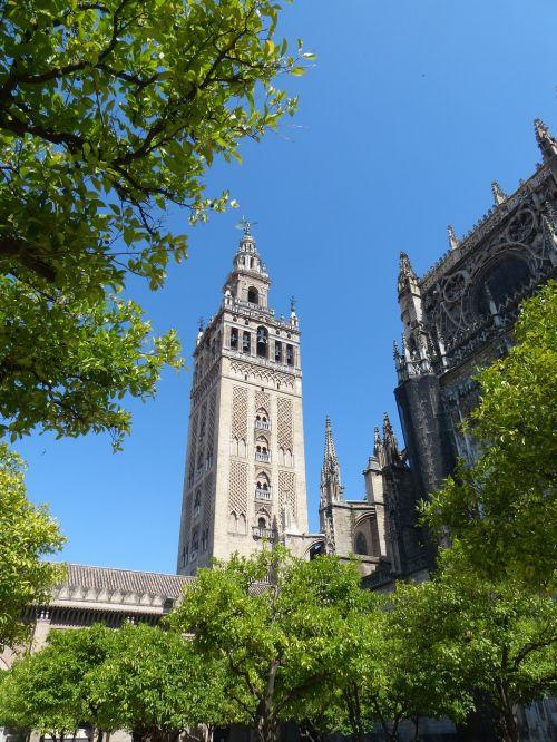 cathedral la giralda plaza virgen de los reyes