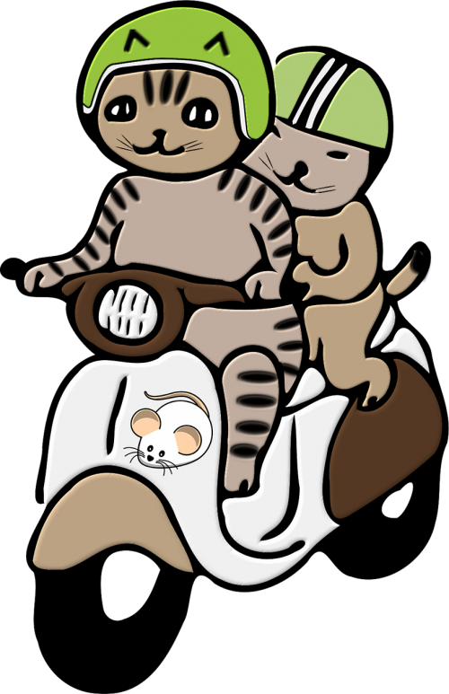 cats helmet png