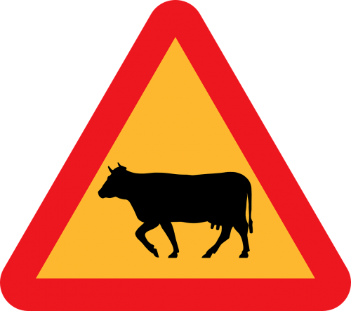 cattle crossing roadsign road sign