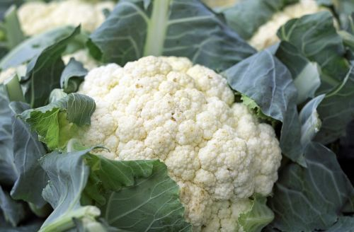 cauliflower vegetables food