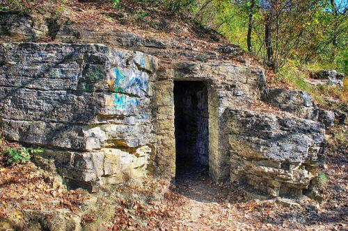cave dragon's lair input