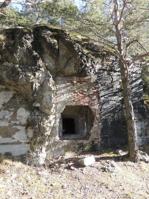 cave bunker input