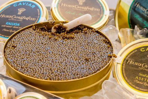 caviar delicacy eat