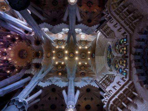 ceiling cathedral sagrada família
