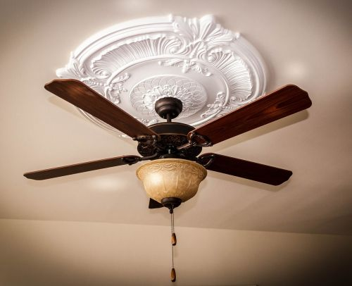 ceiling fan ceiling medallion ceiling light