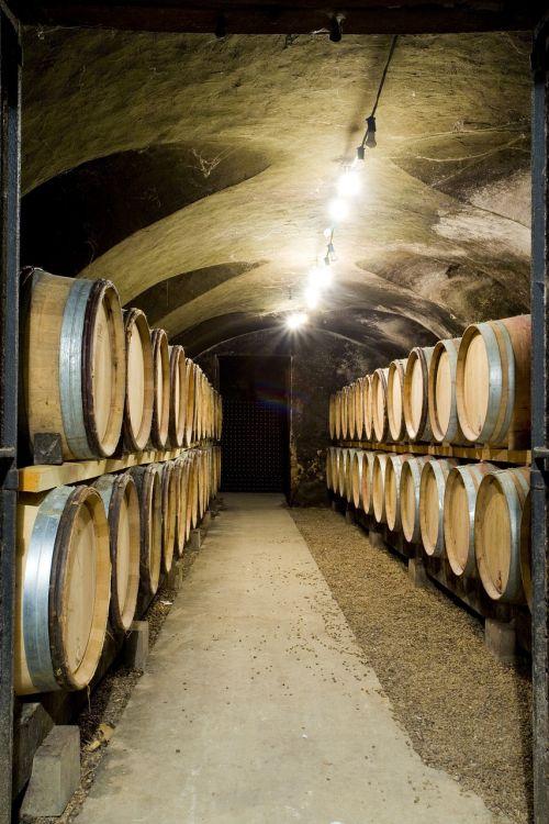 cellar wine botti