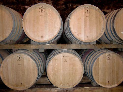 cellar wine barrels barrels