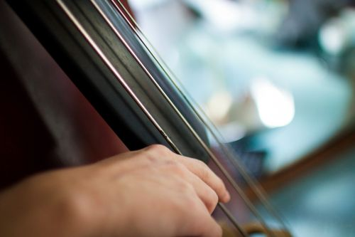 cello musical instrument strings