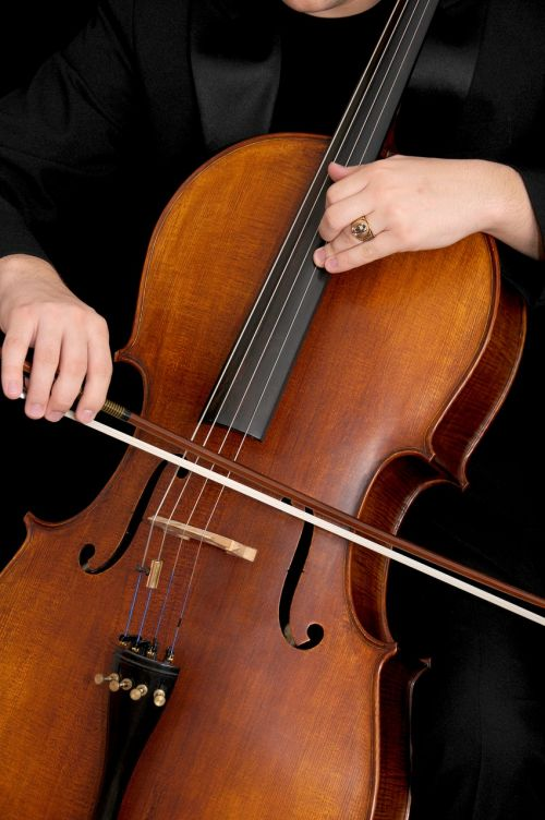 cello musical instrument instrument
