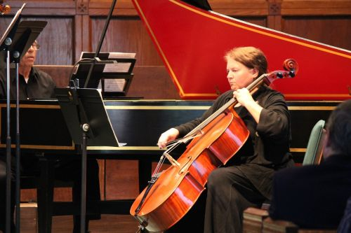 violončelė,instrumentas,muzika,orkestras,simfonija