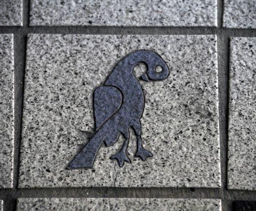 paukštis, paukščiai, plytelės, plytelės, augalas, juoda, architektūra, cementas, betonas, dizainas, eksterjeras, grindys, pilka, pilka, žemė, modelis, dangas, grubus, šaligatvis, kvadratas, metro, los & nbsp, angeles, takas, tekstūra, cemento plytelės su paukščių dizainu
