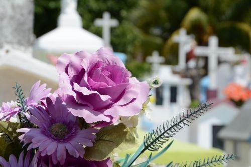 cementerio flor cemetery