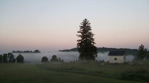 cemetery fog dawn