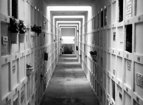 cemetery peace rest