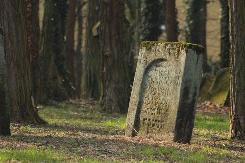 cemetery jewish cemetery jewish