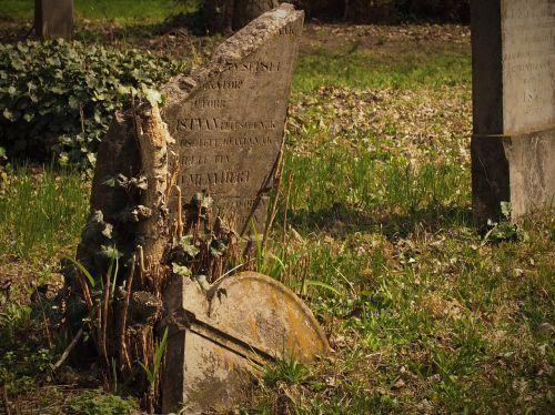 cemetery sorry death