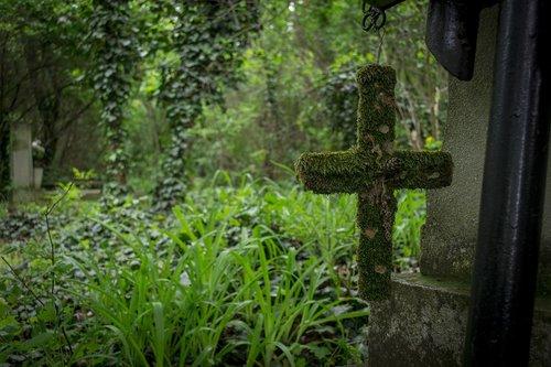 cemetery  cross  graves