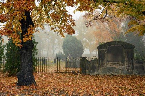 cemetery  silent  commemorate