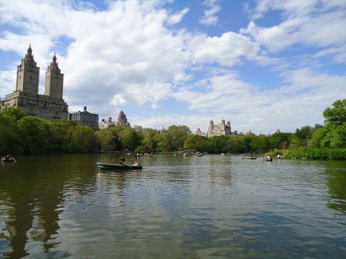 centrinis parkas,Niujorkas,centrinis parkas niujorkas,Manhatanas,parkas,Niujorkas,miesto,medis,New York skyline,architektūra,orientyras,žalias,amerikietis,lauke,kelionė,žolė,mėlynas,miestas,panorama,dangoraižis,gamta,usa,gėlės,kraštovaizdis,sodas