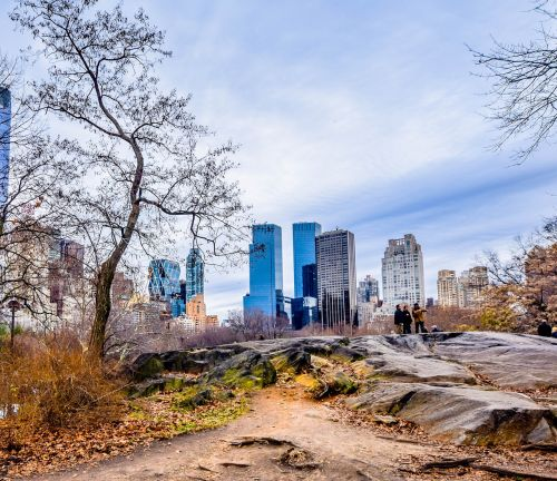 central park new york wiinter