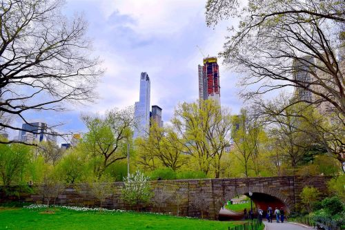 central park nyc spring