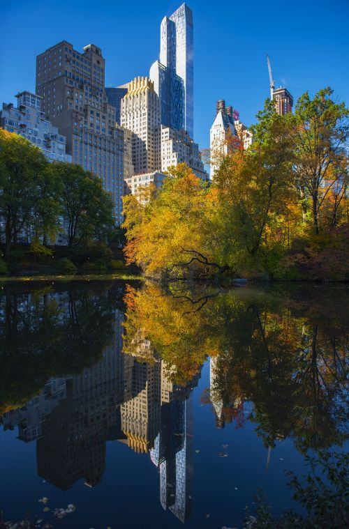 central park reflection autumn