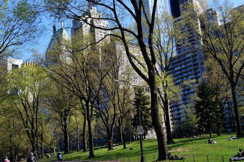central park newyork green