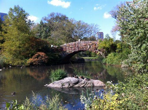 central park new york bridge