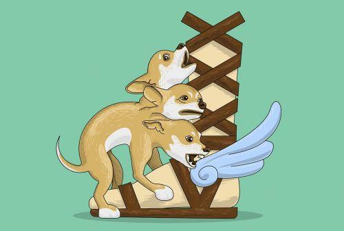cerberus puppy mythology