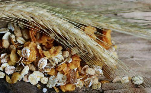 cereals cornstalk muesli