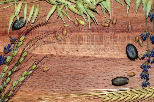 grūdai,ryžiai,miežiai,kvieciai,avižos,Moliūgų sėklos,mediena,rėmas,fonas,padėka,grūdai,javų grūdai,Žemdirbystė,valgyti,maistas,auginimas,pagrindinis maistas,derlius,apdaila,kvietimas,teksto laukelis,avižiniai grūdai,ryžių smaigalys,kviečių grūdai,maistingi miežiai,šablonų meniu,Meniu