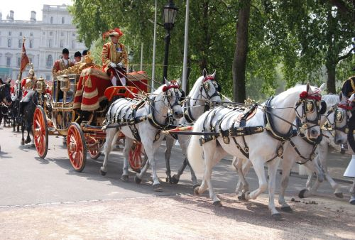 ceremonial coach tradition ceremony