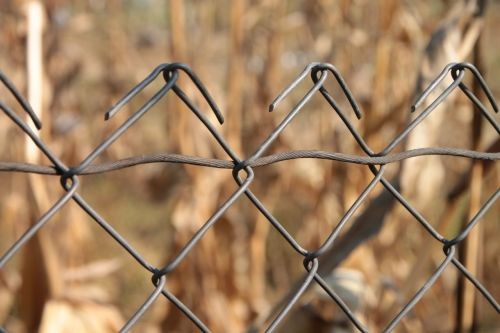 chain fence fencing